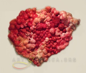 A heart-shape wall-mounted installation in red colors by Monique Lofters