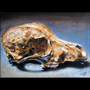 Dog scull painting on blue background painting by M. Elliott